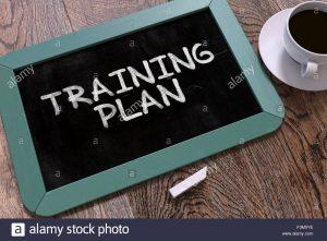 customized training plan