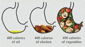 food energy density and weight loss