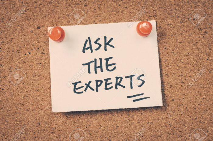 """What Is The """"experts Say"""" Section All About?"""