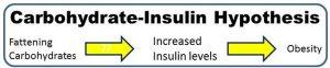 الكربوهيدرات والانسولين