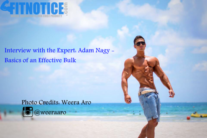 Interview With The Expert: Adam Nagy – Basics Of An Effective Bulk