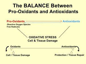 redox balance