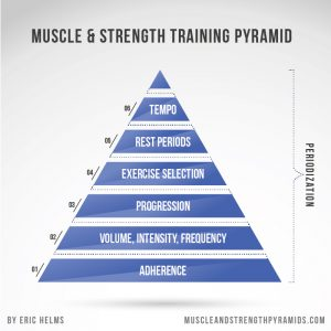 التسلسل الهرمي لعناصر التدريب