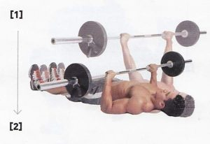 floor press range of motion